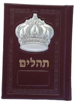 LEATHER & SILVER TEHILLIM